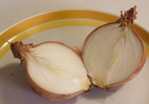 Bulbo di Allium cepa (cipolla) tagliato per mostrarne la struttura.