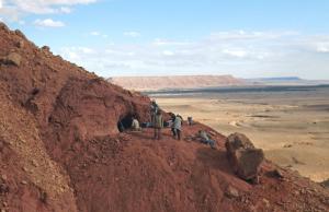 Un sito di scavo nel Sahara dove sono stati ritrovati fossili di Spinosaurus.