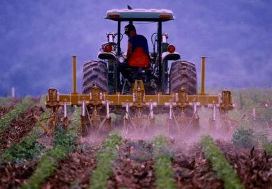 CAPORALATO, FORMIGONI (AP): PIÙ TUTELE E DIRITTI PER LAVORATORI AGRICOLI
